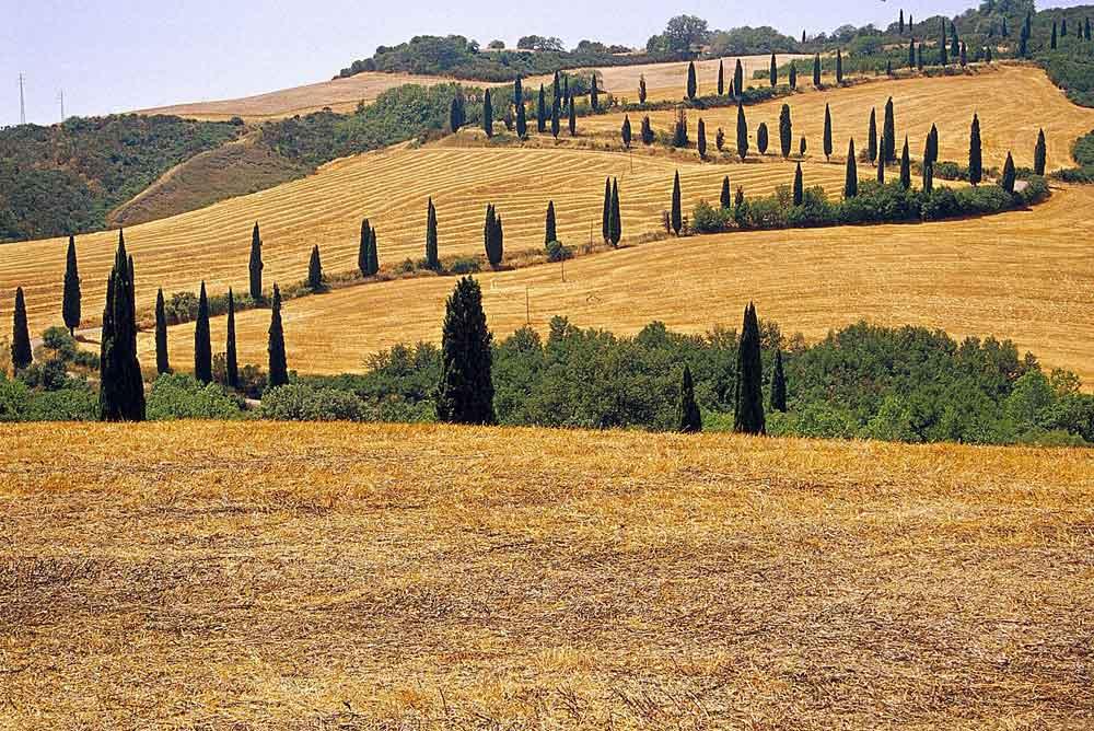 Toscana: la Val d'Orcia (Unesco) Thumbnail