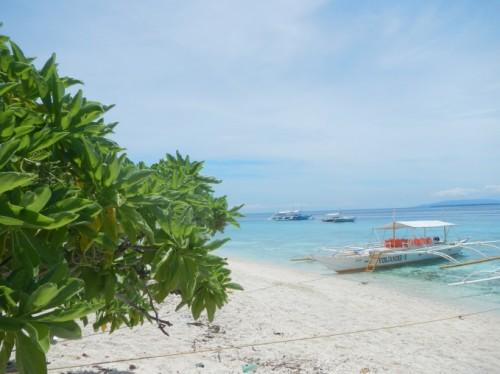 Spiaggia di Bohol , Filippine