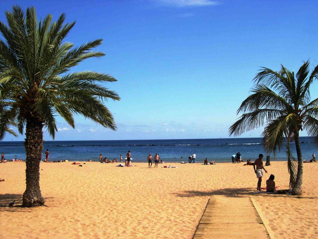 Alla scoperta di Tenerife Thumbnail